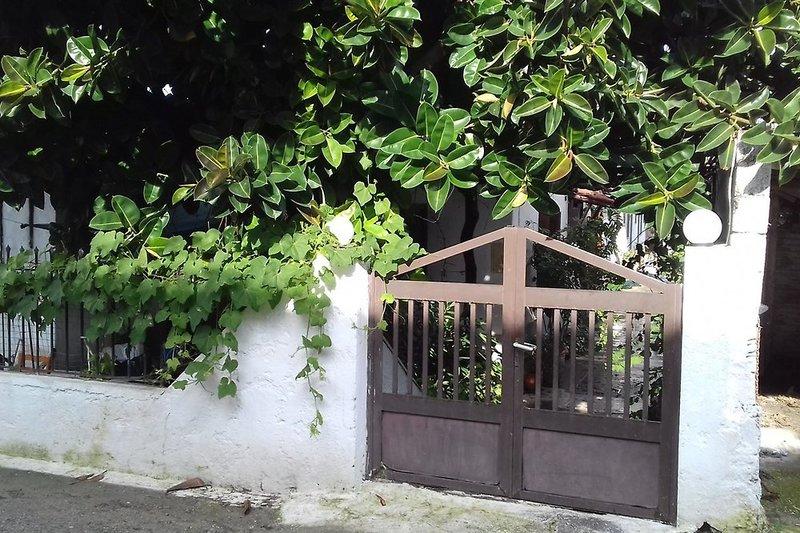 Hotel Pension Helen in Samos - Bild von Neckermann Reisen