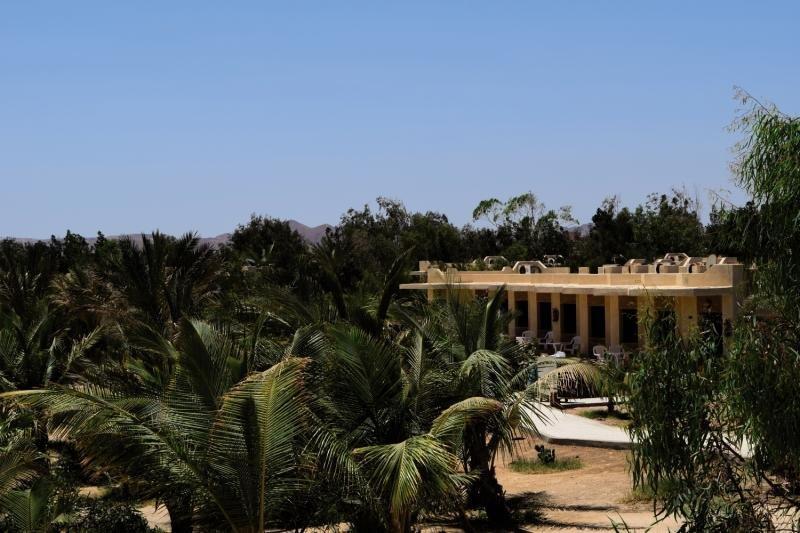 Hotel Mangrove Bay Resort günstig bei weg.de buchen - Bild von FTI Touristik