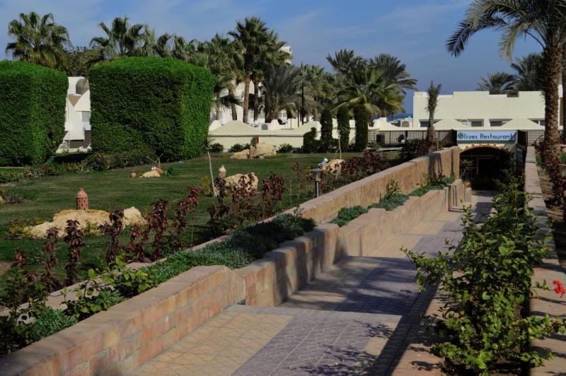 Royal Star Empire Hotel in Rotes Meer - Bild von FTI Touristik