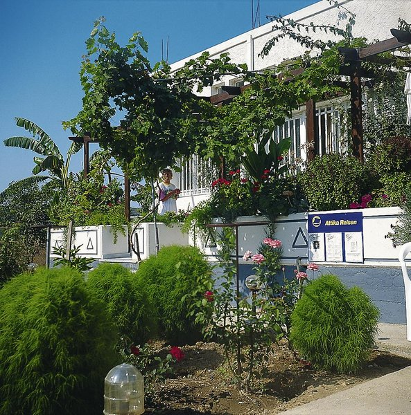 Hotel Philippos günstig bei weg.de buchen - Bild von Attika Reisen